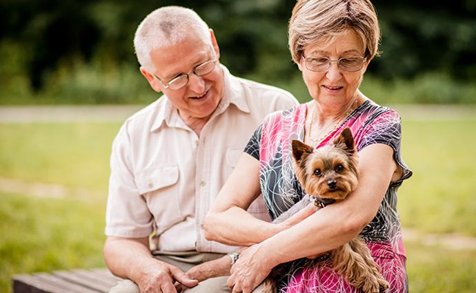Why Owning A Pet Is Good For You?